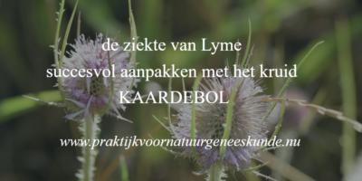 Lyme en Kaardebol