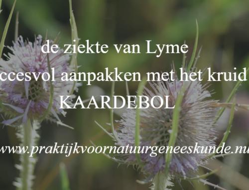 De ziekte van Lyme en het kruid Kaardebol